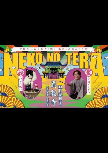 猫の寺(NEKO NO TERA)立川こしら&むぎ(猫)・落語と音楽の二人会のチラシ